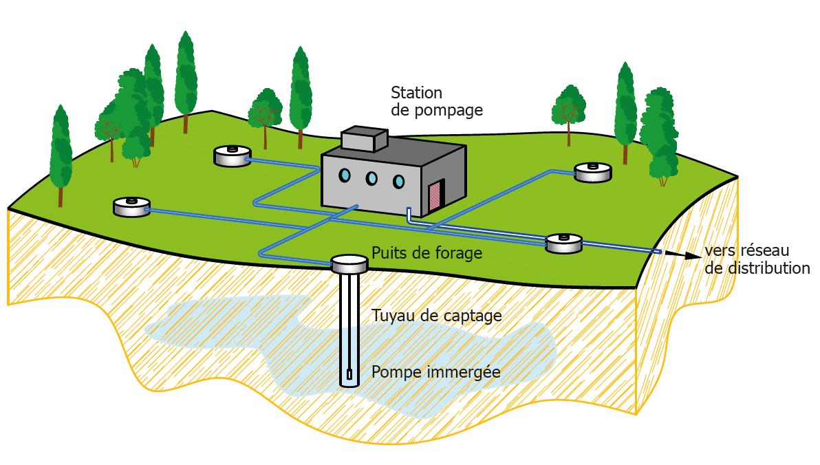 Schéma d'un champ captant d'eau potable