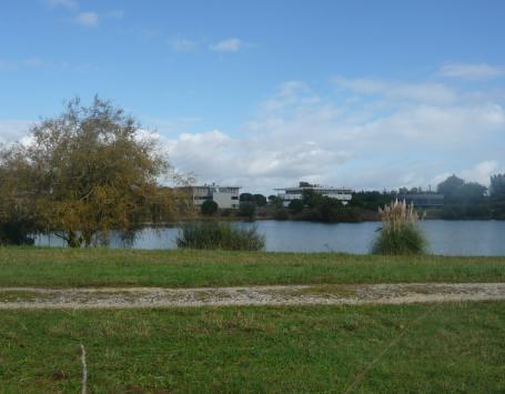 Bassin d'Innolin en premier plan entouré de sa ripisylve avec sur l'autre rive l'implantation d'entreprises