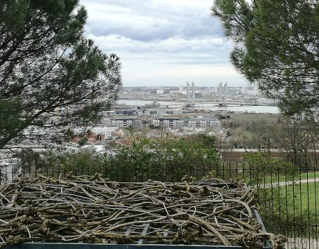 Photo depuis le parc Palmer à Cenon, dans le cadre de la concertation organisée depuis juillet 2017 par Bordeaux Métropole sur le projet de renouvellement urbain du quartier Palmer-Saraillère-8 mai 1945.