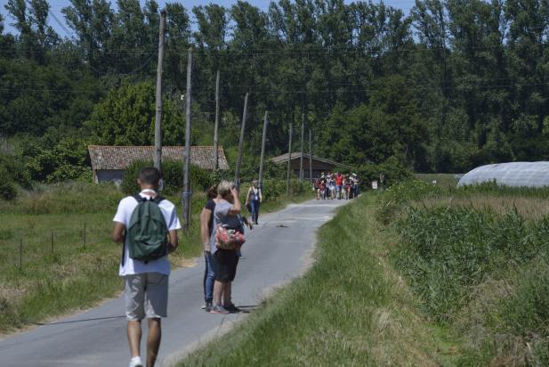 Groupe de randonneurs dans la campagne